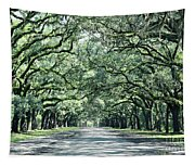Wormsloe Georgia No. 7668 Tapestry
