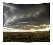 Wray Colorado Tornado 021 Tapestry