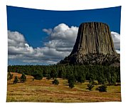 Wyoming's Devil's Tower Tapestry