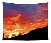 Y Cactus Sunset 6 Tapestry