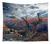 Yaki Point Grand Canyon Tapestry