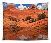 Yant Flat Canyon Reflections Tapestry