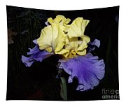 Yellow And Blue Iris Tapestry