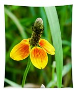 Yellow And Orange Clasping Coneflower Tapestry
