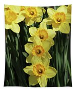 Yellow And Orange Daffodil  #2 Tapestry