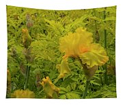 Yellow Bearded Iris Tapestry