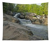 Yellow Dog Falls 4213 Tapestry