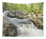 Yellow Dog Falls 4234 Tapestry