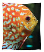 Yellow Fish Profile Tapestry