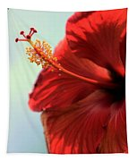 Yellow Red And Coral Hibiscus Profile Tapestry