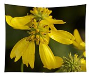 Yellow Wingstem Tapestry