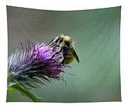 Yellowhead Bumblebee Two Tapestry