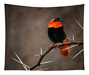 Yikes Spikes - Red Bishop Weaver Bird Tapestry