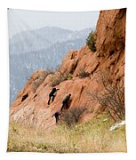 Young Climber In Red Rock Canyon Tapestry