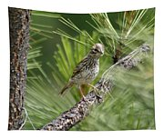 Young Lark Sparrow 3 Tapestry