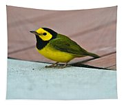 Young Male Hooded Warbler 5 Tapestry