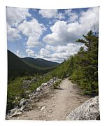 Zealand Notch - White Mountains New Hampshire Usa Tapestry