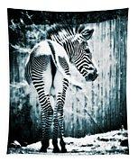 Zebra Blues  Tapestry