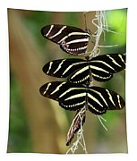 Zebra Butterflies Hanging On Tapestry
