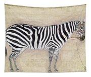 Zebra, C1620 Tapestry