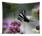Zebra Swallowtail Butterfly On Verbena Tapestry