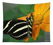 Zebra Wing Profile...   # Tapestry