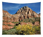 Zion Canyon - Navajo Sandstone Tapestry
