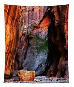 Zion Narrows With Boulder Tapestry