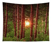 010 - Pine Sunset Tapestry