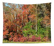 Autumn Colours In Great Smoky Mountains National Park Tapestry