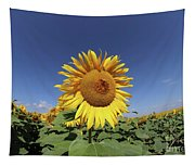 Bee On Blooming Sunflower Tapestry