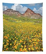 Boundary Cone Butte Tapestry