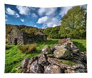 Cottage Ruin Snowdonia Tapestry