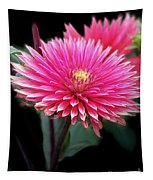 Hot Pink Dahlia  Tapestry