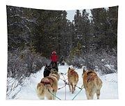 Dog Sledding Near Whitehorse Yukon Canada Tapestry