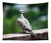 Dove On The Deck Tapestry