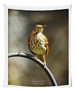 Georgia State Bird - Brown Thrasher Tapestry