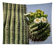 Saguaro Blooms To The Sky  Tapestry