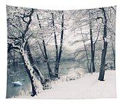 Snow Pond Tapestry