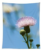 Thistle With Blue Sky Background Tapestry