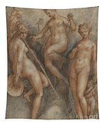 Three Goddesses  Minerva, Juno And Venus Tapestry