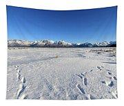 Turnagain Arm And Chugach Range From Hope Alaska Tapestry