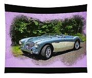 1956 Austin Healey 100-4 M  Tapestry