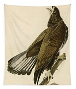 White Headed Eagle  Tapestry