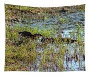 Green Heron Looking For Food Tapestry
