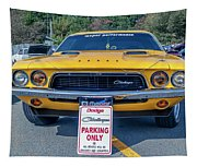 1973 Dodge Challenger Tapestry