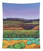 Desert Gorge Tapestry