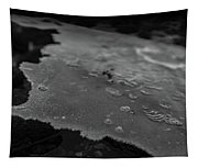 Ice Layer On The Seafloor Tapestry