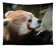 Red Panda Tapestry
