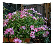 Variegated Tapestry